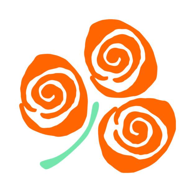 First 16 roses through to televised stages of Rose of Tralee are announced